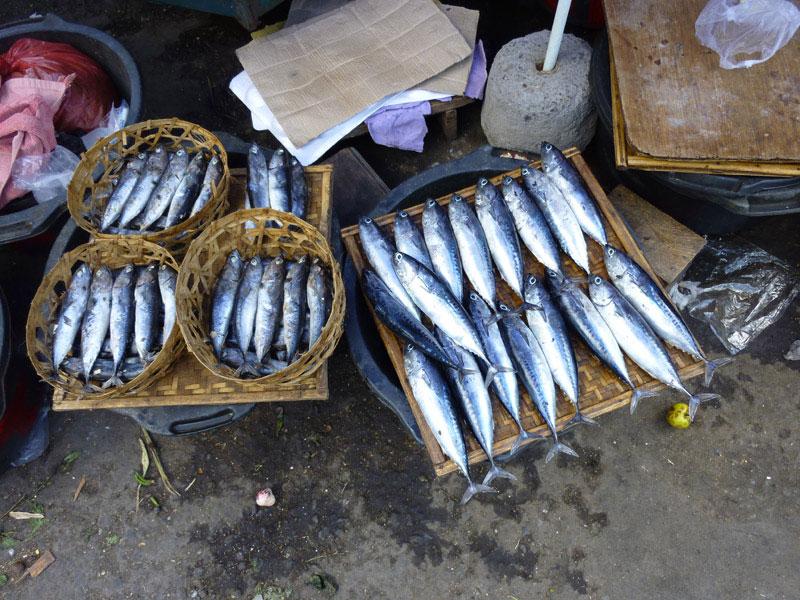 Amed - Bali27