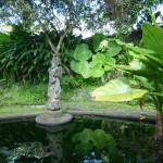 Amed - Bali11