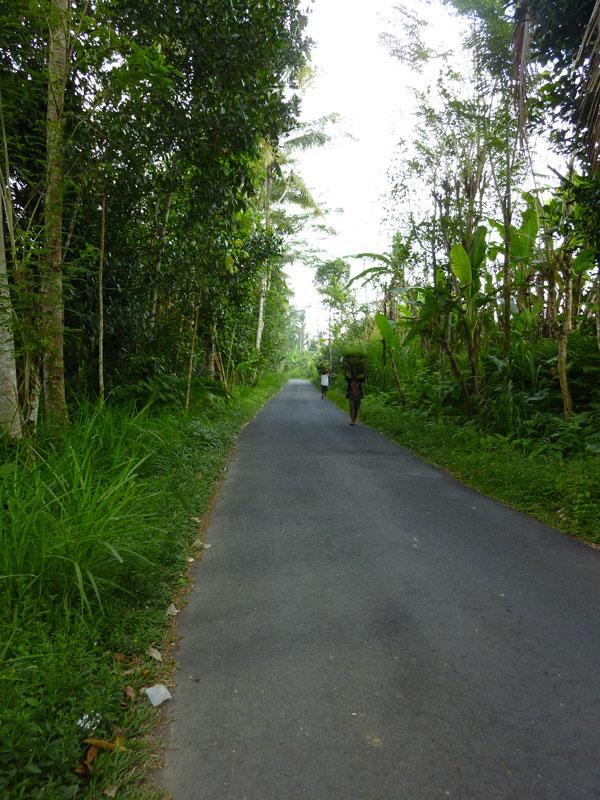 Bali en scooter II32