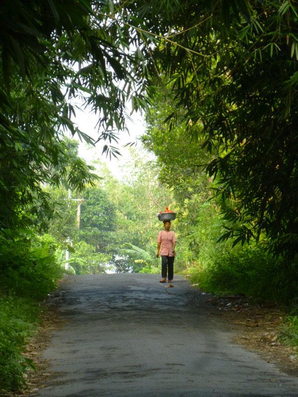 Bali en scooter44