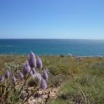 Cape Range National Park01
