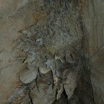 Katherine - Cutta Cutta Cave03