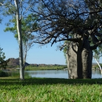 Kununurra - Lily Creek Lagoon02