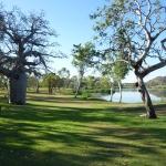 Kununurra - Lily Creek Lagoon03