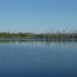 Kununurra - Lily Creek Lagoon06