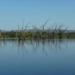 Kununurra - Lily Creek Lagoon08