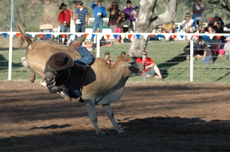 Kununurra - Rodeo09