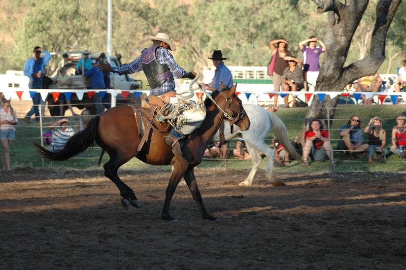 Kununurra - Rodeo13