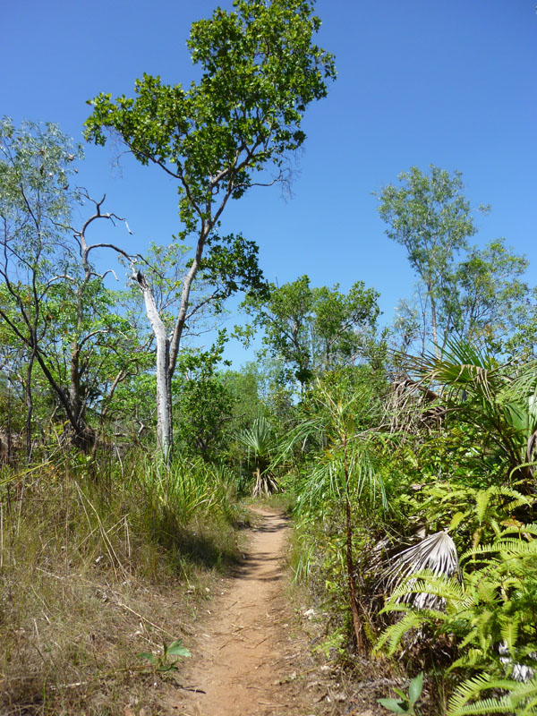 Litchfield National Park04