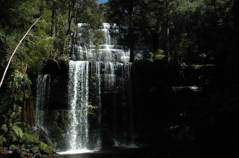 Galerie: Mt Field NP - Tasmanie