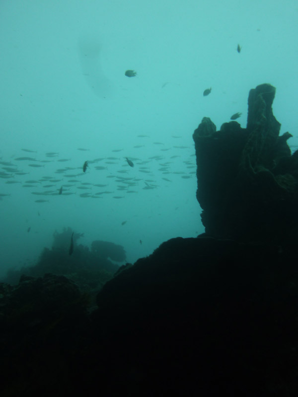 Plongee a Jemeluk10