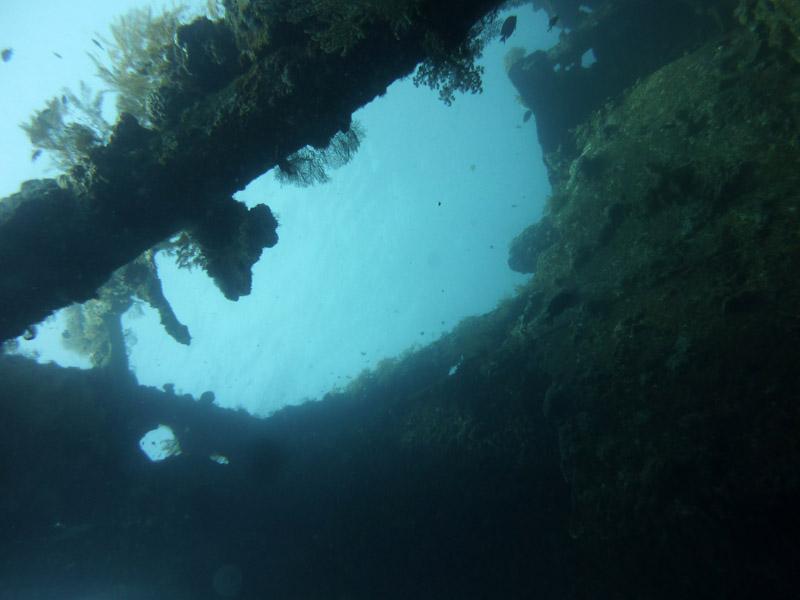 Plongee au Liberty Wreck22