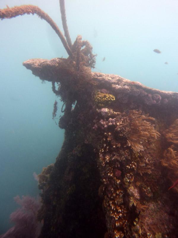 Snorkeling a Jemeluk01