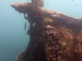 Snorkeling à Jemeluk
