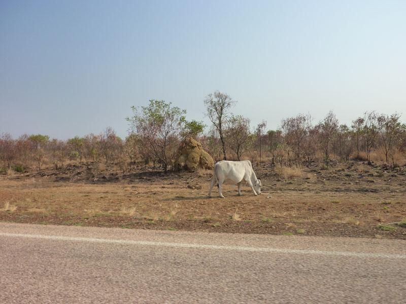 Sur la route Kx-Bm16