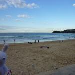 Sydney---Manly-01