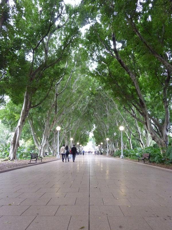 Sydney - Hyde Park