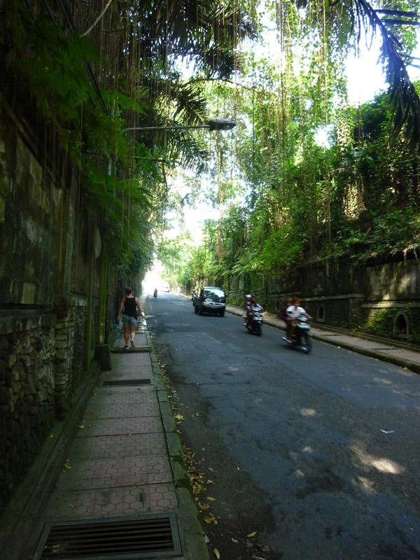 Ubud - Bali10