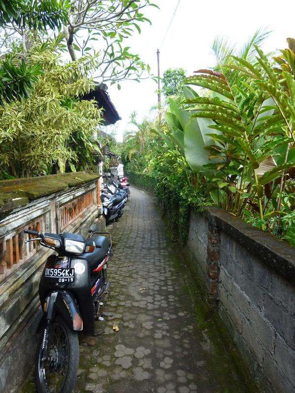 Ubud - Bali12