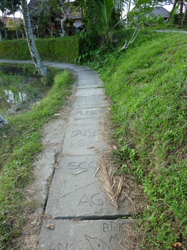 Ubud - Bali17