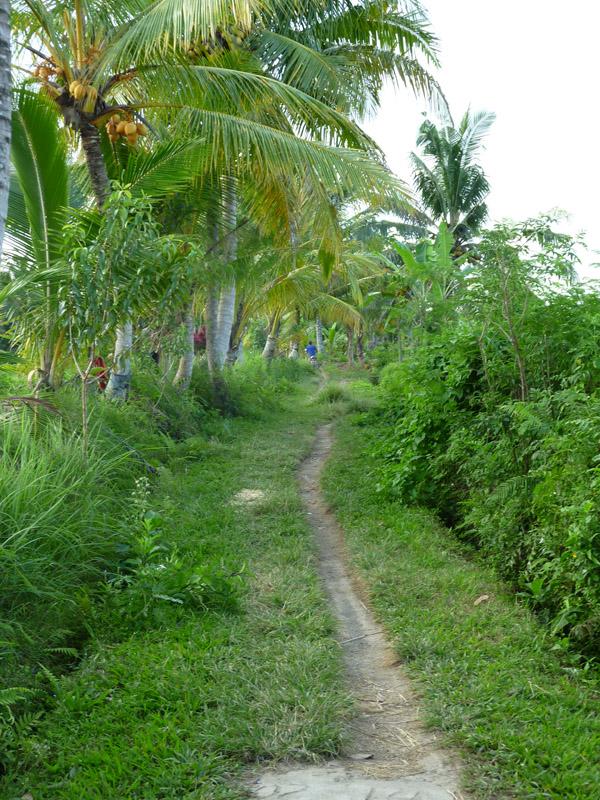 Ubud - Bali19