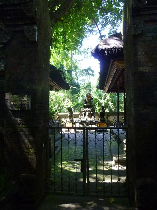 Ubud - Bali48