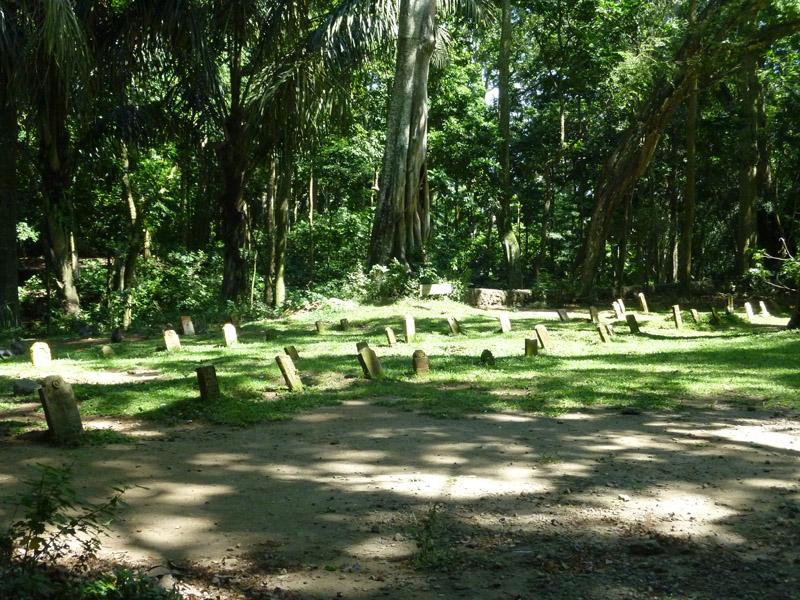 Ubud - Bali49