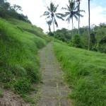 Ubud - Bali03