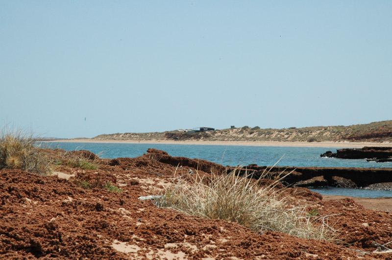 Wilderness Island01