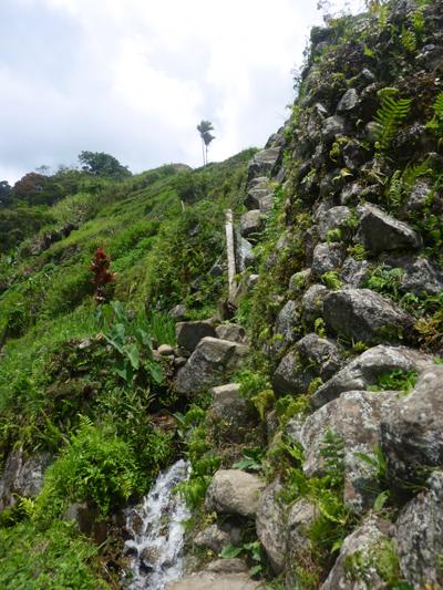 Escalier de pierre dépassant du mur