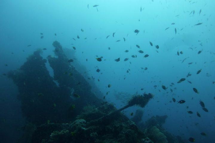En milieu subaquatique sur la côte Est de Bali