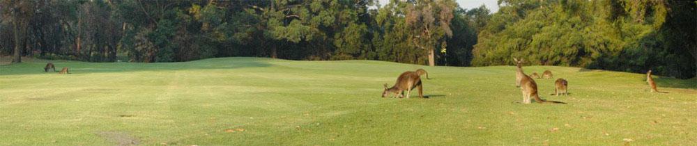 Margaret River Golf06