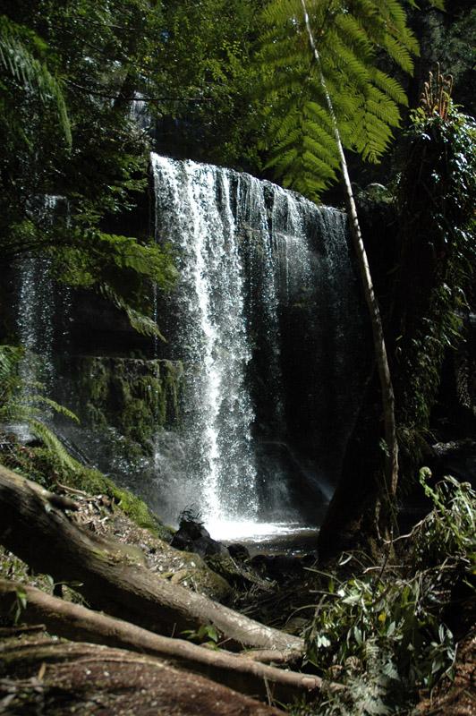Mt Field NP - Tasmanie