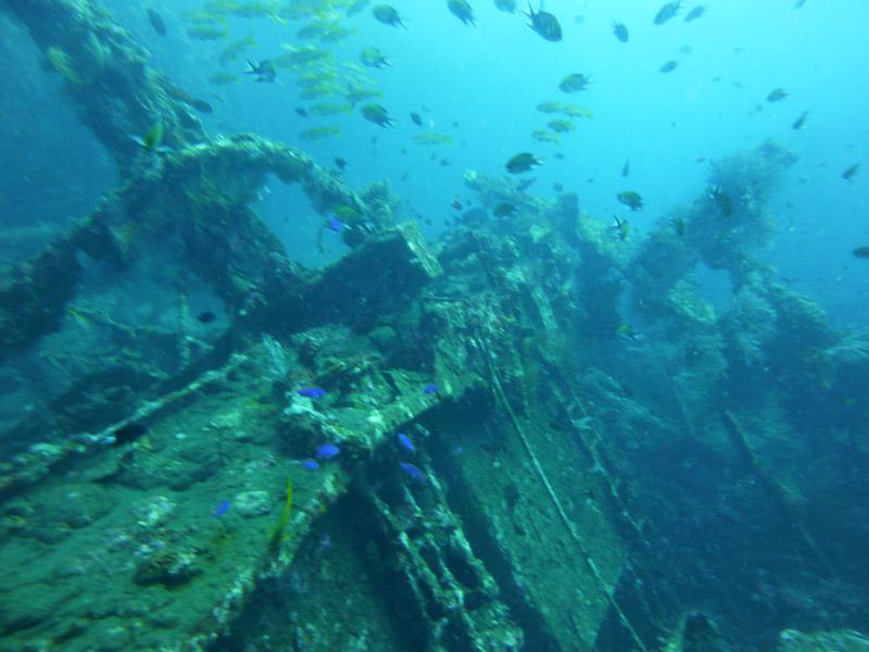 Plongee au Liberty Wreck08