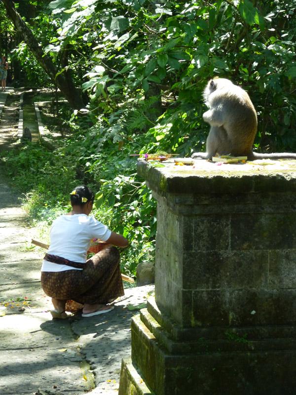 Ubud - Bali34