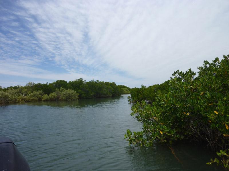 Wilderness Island70